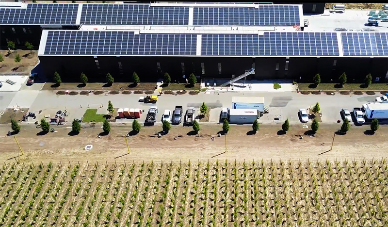 Flying overhead camera shot of Silver Oak green winery in Alexander Valley, looking down at solar panels installed on winery roof.